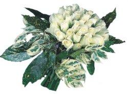 Ordu internetten çiçek satışı  9 Beyaz gül Özel kisiler için