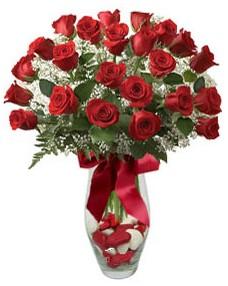 17 adet essiz kalitede kirmizi gül  Ordu çiçek online çiçek siparişi