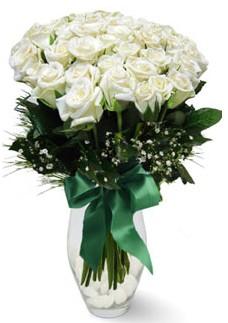 19 adet essiz kalitede beyaz gül  Ordu çiçek siparişi sitesi