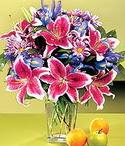 Ordu çiçek online çiçek siparişi  Sevgi bahçesi Özel  bir tercih