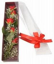 kutu içinde 5 adet kirmizi gül  Ordu internetten çiçek satışı