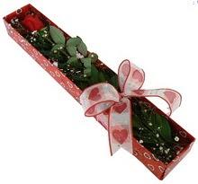Tek kirmizi gül kutu içerisinde  Ordu çiçek mağazası , çiçekçi adresleri