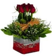 Ordu çiçek gönderme sitemiz güvenlidir  7 adet mika yada cam vazoda gül tanzimi