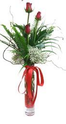 Ordu hediye çiçek yolla  3 adet kirmizi gül vazo içerisinde