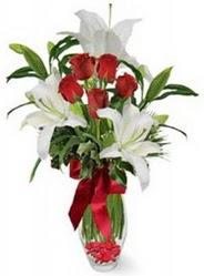 Ordu çiçekçiler  5 adet kirmizi gül ve 3 kandil kazablanka