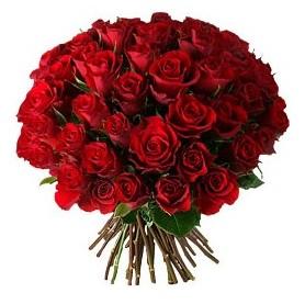 Ordu çiçekçi telefonları  33 adet kırmızı gül buketi