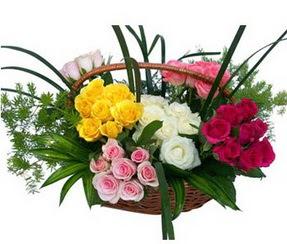 Ordu çiçek satışı  35 adet rengarenk güllerden sepet tanzimi