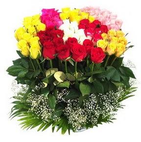 Ordu çiçek online çiçek siparişi  51 adet renkli güllerden aranjman tanzimi