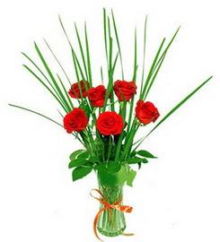 Ordu çiçekçi telefonları  6 adet kırmızı güllerden vazo çiçeği