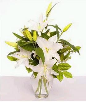 Ordu çiçek gönderme sitemiz güvenlidir  2 dal cazablanca vazo çiçeği