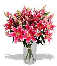 4 dal cazablanca görsel vazosu  Ordu ucuz çiçek gönder
