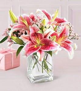 2 dal kazablanka görsel vazosu  Ordu hediye çiçek yolla