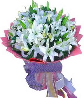 7 dal cazablanca görsel buketi  Ordu ucuz çiçek gönder