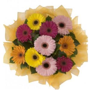 Ordu online çiçekçi , çiçek siparişi  11 adet karışık gerbera çiçeği buketi