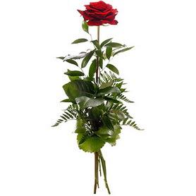 Ordu güvenli kaliteli hızlı çiçek  1 adet kırmızı gülden buket
