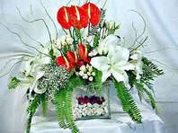 Ordu çiçek online çiçek siparişi  Anthurim Kazablanka  gül