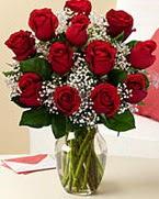 Sevgilime hediye 9 adet 1.ci kalite gül  Ordu uluslararası çiçek gönderme