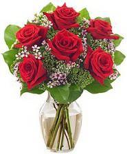 Kız arkadaşıma hediye 6 kırmızı gül  Ordu internetten çiçek satışı
