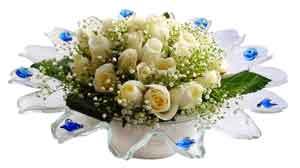 Ordu anneler günü çiçek yolla  11 adet Beyaz güller özel cam tanzim