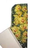 Ordu çiçek gönderme sitemiz güvenlidir  Kutu içerisine dal cymbidium orkide