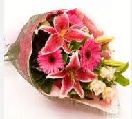 1 dal kazablanka ve mevsim çiçekleri  Ordu internetten çiçek satışı