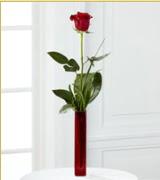 Vazo içerisinde 1 adet kırmızı gül  Ordu internetten çiçek satışı