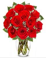 12 adet vazoda kıpkırmızı gül  Ordu çiçek siparişi vermek