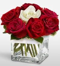 Tek aşkımsın çiçeği 8 kırmızı 1 beyaz gül  Ordu cicek , cicekci