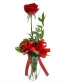vazo içerisinde 1 adet kırmızı gül  Ordu çiçek yolla