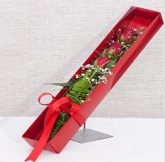 Kutu içerisinde 3 adet kırmızı gül  Ordu internetten çiçek siparişi