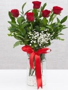 cam vazo içerisinde 5 adet kırmızı gül  Ordu online çiçek gönderme sipariş
