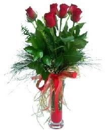 vazo içerisinde 5 kırmızı gül  Ordu çiçek mağazası , çiçekçi adresleri