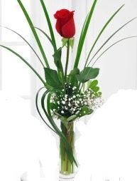 Cam içerisinde 1 kırmızı gül  Ordu çiçek yolla , çiçek gönder , çiçekçi