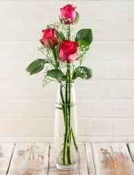 Cam içerisinde 3 kırmızı gül  Ordu çiçek gönderme