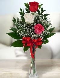 Camda 2 kırmızı 1 beyaz gül  Ordu çiçek satışı