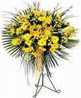 Ordu kaliteli taze ve ucuz çiçekler  Sari kazablanka Ferforje
