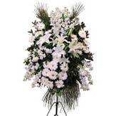 Ordu çiçek siparişi vermek  Ferforje beyaz renkli kazablanka