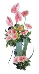 Ordu çiçek mağazası , çiçekçi adresleri  Pembe Antoryum Harikalar Rüyasi