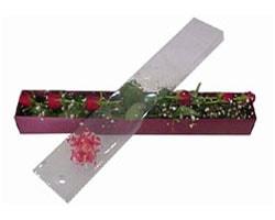 Ordu uluslararası çiçek gönderme   6 adet kirmizi gül kutu içinde