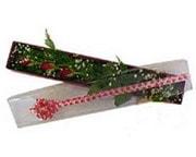 Ordu çiçek , çiçekçi , çiçekçilik  3 adet gül.kutu yaldizlidir.