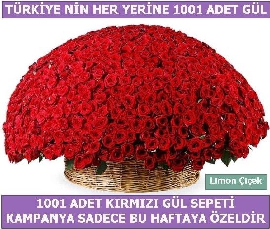 1001 Adet kırmızı gül Bu haftaya özel  Ordu online çiçekçi , çiçek siparişi