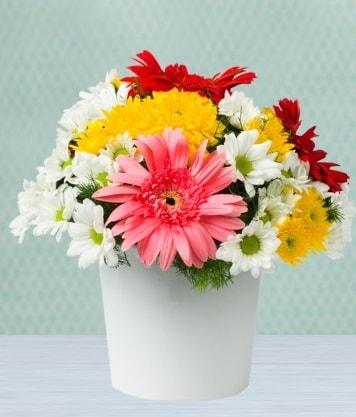 Seramik Vazoda Gelbera ve Papatya  Ordu çiçek gönderme sitemiz güvenlidir