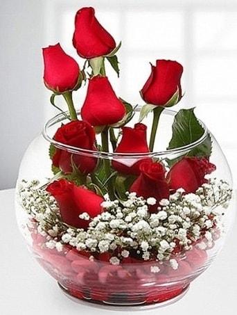 Kırmızı Mutluluk fanusta 9 kırmızı gül  Ordu hediye çiçek yolla