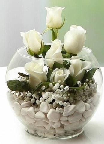 Beyaz Mutluluk 9 beyaz gül fanusta  Ordu hediye çiçek yolla