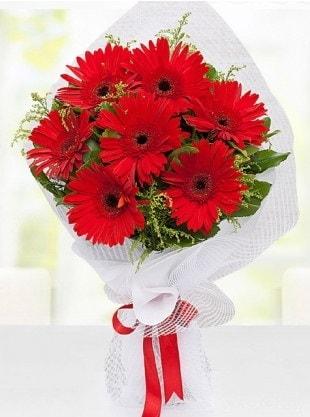 Kırmızı Gelbera Buketi  Ordu internetten çiçek satışı