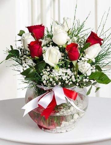 Aşk Küresi  5 beyaz 5 kırmızı gül fanusta  Ordu çiçekçi mağazası