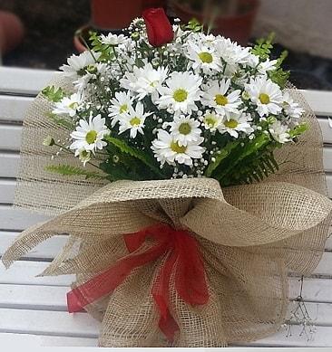 Papatya 1 adet kırmızı gül buketi  Ordu çiçek siparişi sitesi