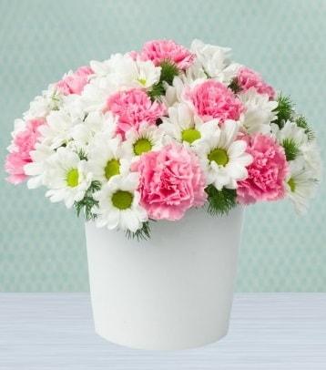 Seramik vazoda papatya ve kır çiçekleri  Ordu hediye çiçek yolla