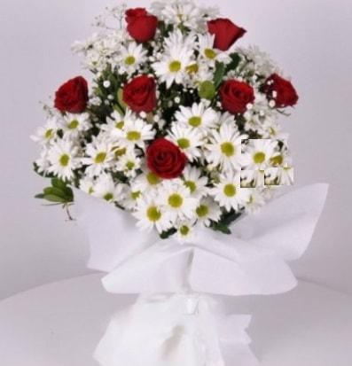 7 adet kırmızı gül ve papatyalar krizantem  Ordu çiçekçi mağazası
