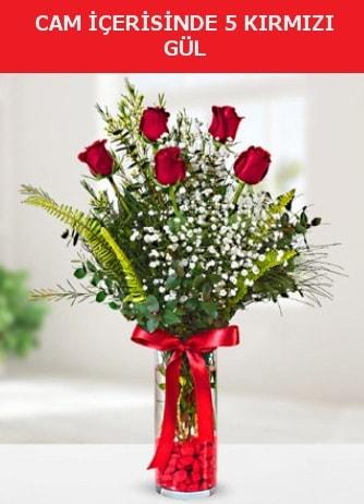 Cam içerisinde 5 adet kırmızı gül  Ordu hediye çiçek yolla